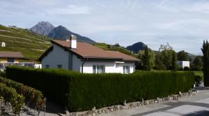Magnifique villa à Vétroz (Valais)